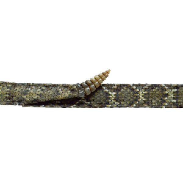 b6b2f3967cde7 Style  8150 Western Diamondback Rattlesnake Band ...