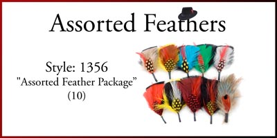 Style: 1356 Assorted Hat Feather 10 Pack