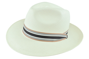 Style: S-132 Panama Center Dent Hat