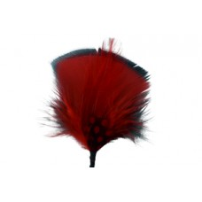Style: 229 Hat Feathers