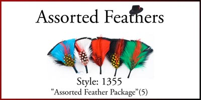Style: 1355 Assorted Hat Feather Package (5)
